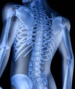mans-back-skeleton